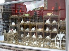 Easter window display idea..use cubbies to display chickens, eggs, and add signs on front of empty slots