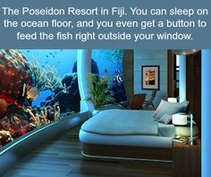 Posiedon Resort in Fiji, sleeping on the Ocean floor and you can feed the fishies!