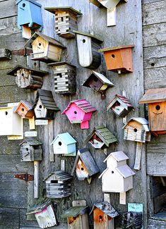 back wall - I LOVE this, maybe I will start with my kids painting little bird houses (Diy Apartment Garden) Garden Crafts, Garden Projects, Garden Ideas, Bird Houses Diy, Bluebird Houses, Decorative Bird Houses, Bird Boxes, Painting For Kids, Yard Art