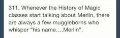 """His name....Merlin"""