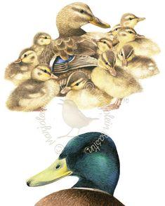 """Busy Times for Mother Duck"" #marjoleinbastin #marjolein_bastin_art  #marjoleinart #thomaskinkadegalleriesofnynj"