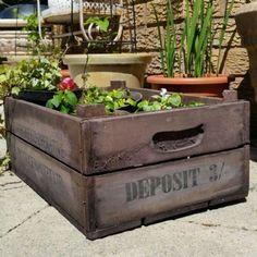 Large Wooden Flower Crate | Oscar's Boutique Ltd