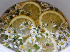 Drinks, Gardening, Syrup, Drinking, Beverages, Lawn And Garden, Drink, Beverage, Horticulture