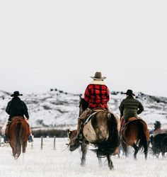Sublette County: Rodeo Dreams in the Icebox of the Country Cowboy Horse, Cowboy And Cowgirl, Cowboy Gear, Cowgirls, Ranch Life, Old West, Western Art, Livestock, Rodeo