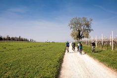 Itinerari MTB: Slow Bike tra Lago di Garda e Valle del Mincio