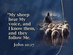 JOHN 10:27 OH FOR RARS TO HEAR LORD*! JESUS*!!! FOR EARS TO HEAR....ONLY*! YOU*!!!!!!!