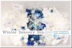 Winter Sensory Bin with Word Recognition