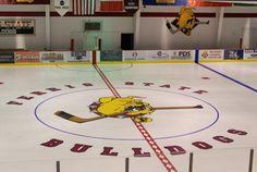 Ewigleben Ice Arena, Ferris State Hockey