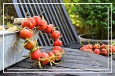 Sy lynlås i en taske eller pung, Guide til isyning af lynlås og foer Scrunchies, Hue, Fruit, Vegetables, Scrappy Quilts, Dekoration, Creative, Vegetable Recipes, Veggies