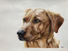 Pet Portraits, Labrador Retriever, Hand Painted, Pets, Artist, Painting, Animals, Labrador Retrievers, Animales
