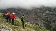 Pirineos Occidentales observando sarrios. Mirua Actividades Naturaleza Mountains, Nature, Travel, Pyrenees, Trekking, Walks, Paths, Naturaleza, Activities