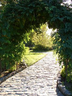 A cobblestone walkway underneath Wisteria arches looks peaceful in the sunlight. Magic Garden, Dream Garden, Sun Garden, Garden Shrubs, Covent Garden, Kew Gardens, Outdoor Gardens, Formal Gardens, Small Gardens