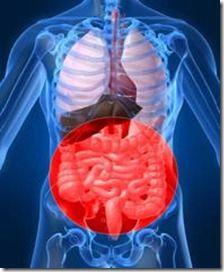 inflammation i tarmarna