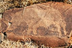 The message of ancient petroglyphs