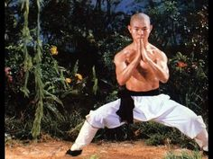 Jet Li - four seasons training