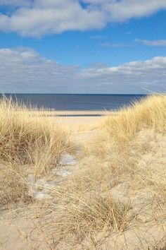 Sylt / Island in northern Germany