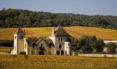 chateau de la tour, clos de vougeot vineyards (burgundy, france)