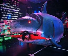 Katy Perry Survives Shark Attack, Remains Adorable