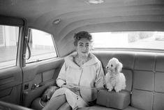 Joan Crawford and friend