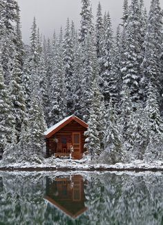..in a Rustic Cabin in the Snow.. looks Brrrocious.