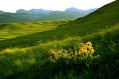 Montana Scenery | Montana Scenery | The Real America