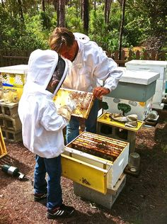 A young beekeeper just checking his hive.