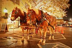 Christmas in Highland Park , Dallas www.hpvillage.com