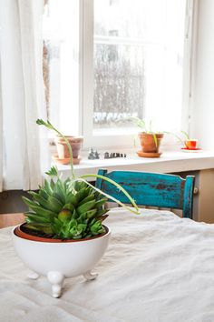 Kotona Kalliossa, osa 6- kuvasarja blogissa. Kuvat: Johanna Levomäki Pot