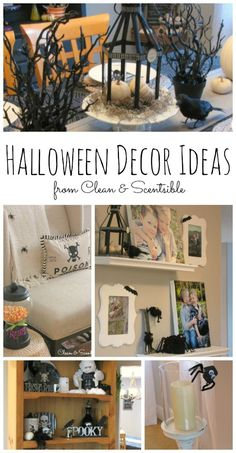 Lots of fun and easy Halloween decorating ideas to help inspire you for the season!  // cleanandscentsible.com
