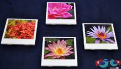 Polaroid Picture Coasters