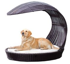 Outdoor Dog Chaise Lounge by The Refined Canine. Extra large. $249.99.