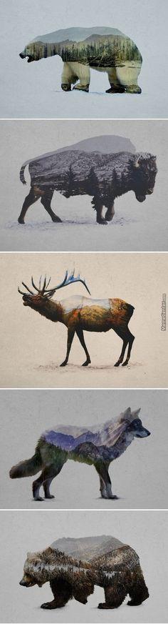 Double exposure - wild animals and nature