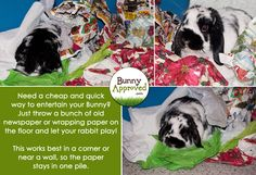DIY Rabbit Toy Ideas | Bunny Approved // This is basically Pongo's favorite activity.