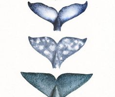 Orca, Humpback, Gray & Sperm whale tails, painted with Black Tourmaline… Watercolor Whale, Watercolor Paintings, Whale Species, Whale Tattoos, Tatoo Henna, Whale Art, Blue Whale Drawing, Grafik Design, Sea Creatures