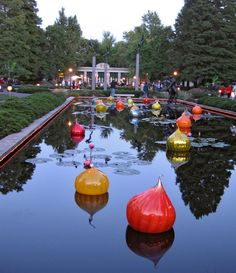 Missouri Botanical Gardens, 2006 Chihuly exhibit (STL Pin of the Day, St Louis Botanical Garden, Missouri Botanical Garden, Botanical Gardens, St Louis Mo, Summer Garden, Summer Fun, Vacation Destinations, Vacations, Places To Go