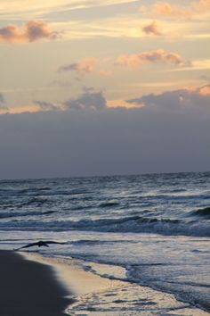 The most beautiful place in the world at 6am; Fort Morgan, AL taken by Angel Miller angelprints2010@gmail.com