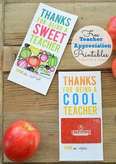 [Teacher Appreciation Ideas] Gifts