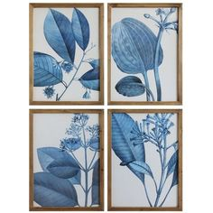 Terrain 'Blue Botanical' 4 Piece Framed Painting Print Set ($37) ❤ liked on Polyvore featuring home, home decor, wall art, set of 4 wall art, framed wall art, blue home accessories, blue painting and blue home decor