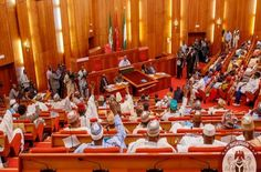Senate Defers Action on REC Nominees over President's Inaction on Magu