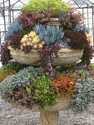 three tiered succulent garden in rustic concrete planter