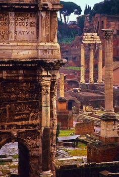 Roman Forum, The ruins from front to back are, the Arch of Septimius Severus (AD 203), the Column of Phocas (far right, AD 608), the Via Sacra (cobblestone path near steps, circa 5th century BC), the Basilica of Julia (steps, BC 54), the Temple of Castor and Pollux (3 columns, BC 484), and in the distance the ruins of the Palatine Hill (BC 510 - AD 576).