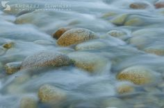 Water. River Bialka, Poland.