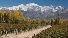 Conhecer Mendoza na Argentina é um dos motivos para viajar em Abril 2018