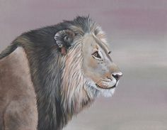 Lion Painting  Print of lion painting 5 by 7 size by LouiseDeMasi