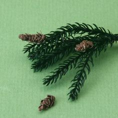 how to make scale fir, spruce and pine cones from wire and paper.   Shown: dolls house scale pine cones on a branch made from lycopodium moss.