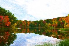 New print available on lanjee-chee.artistwebsites.com! - 'Autumn with colorful foliage and water reflection 7' by Lanjee Chee - http://lanjee-chee.artistwebsites.com/featured/autumn-with-colorful-foliage-and-water-reflection-7-lanjee-chee.html via @fineartamerica
