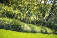Lawn and Garden Tools Basics Pastorijwoning Tuinaanleg Gert Kwanten Modern Garden Design, Landscape Design, Garden Gates, Garden Tools, Ornamental Grasses, Plantation, Plant Design, Interior Exterior, Dream Garden