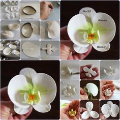 orchid step by orquidea paso a paso orchid step by step - Flower Crafts, Diy Flowers, Paper Flowers, Fondant Flower Tutorial, Fondant Flowers, Polymer Clay Flowers, Polymer Clay Crafts, Sugar Paste Flowers, Cold Porcelain Flowers