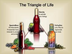Sisel's Triangle of Life consist of a powerful seaweed-based immune builder called #FuCoyDon. Then #Eternity which is a trans-resveratrol based liquid nutritional beverage. And finally #Spectramaxx, the world's first megatonic with 40+ super-foods, 74 essential trace minerals & organic fulvic acid in therapeutic doses. #Sisel #TriangleOfLife Order yours here >>> http://bit.ly/1MYfTBt