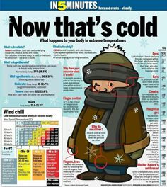 Frostbite - What happens to your body in extreme temperatures. Survival Tips, Survival Skills, Wilderness Survival, Just In Case, Just For You, Winter Survival, Soft Eyes, Cold Temperature, Temperature Chart